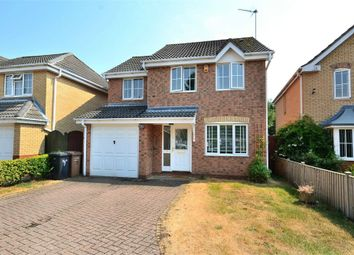 Thumbnail 4 bed detached house for sale in Blick Close, West Winch, King's Lynn
