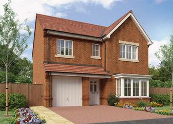 "Thumbnail 4 bedroom detached house for sale in ""The Glenmuir"" at Buttercup Gardens, Blyth"
