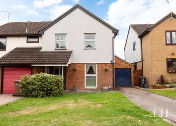 Thumbnail 4 bed semi-detached house for sale in Sheppard Drive, Springfield, Chelmsford