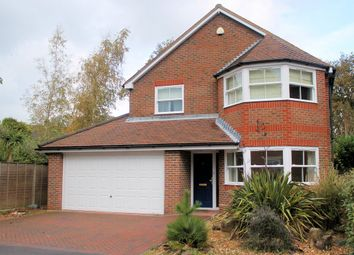 Thumbnail 4 bed detached house to rent in Catisfield Road, Fareham