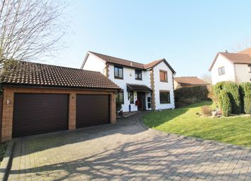 Thumbnail 4 bedroom detached house for sale in Shepherd Drive, Langstone, Newport