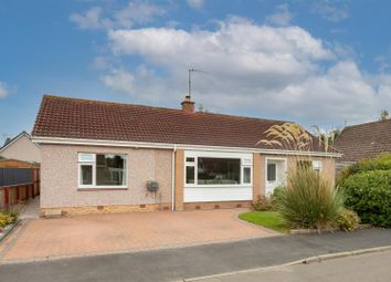 Thumbnail 3 bed detached bungalow for sale in Mapledene Road, Scone, Perth