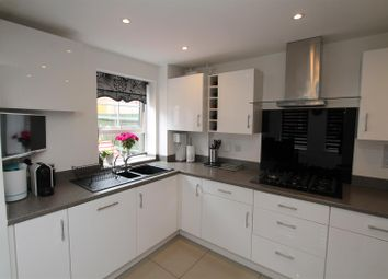 Thumbnail 4 bed semi-detached house for sale in Sparrowhawk Place, Hatfield