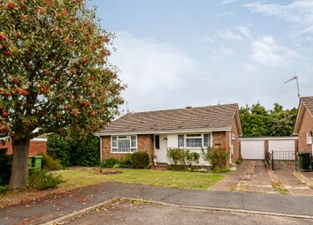 Thumbnail 3 bed bungalow for sale in Candy Croft, Bookham, Leatherhead
