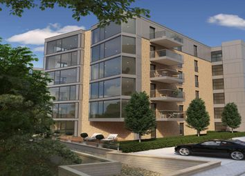 "Thumbnail 2 bed flat for sale in ""Dianthus"" at Hamilton Drive, Glasgow"