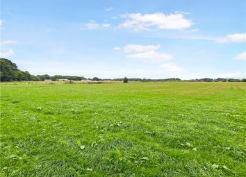 Thumbnail Land for sale in Dunkeswell, Honiton, Devon