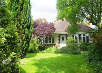 Thumbnail 3 bed bungalow for sale in Hazeldene, Plains Lane, Blackbrook, Belper, Derbyshire