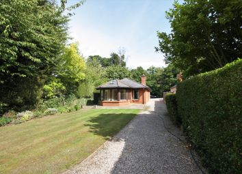 Thumbnail 3 bed detached bungalow for sale in The Ridge, Little Baddow, Chelmsford