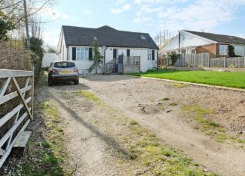 Thumbnail 5 bedroom detached bungalow for sale in Dargate Road, Yorkletts, Whitstable