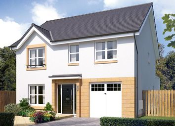 "Thumbnail 4 bedroom detached house for sale in ""The Rosebury"" at Cairneyhill, Dunfermline"