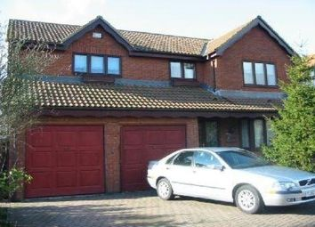 Thumbnail 5 bed detached house to rent in Fawley Close, Boldon Colliery