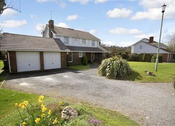Thumbnail 4 bedroom detached house for sale in Brettingham Gate, Broome Manor, Old Town