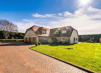 Thumbnail 4 bed detached house for sale in Anderson Lane, Southgate, Swansea