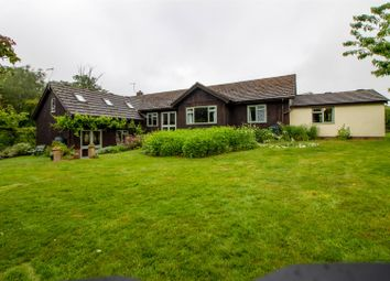 Thumbnail 5 bed detached bungalow for sale in Ardeley, Stevenage