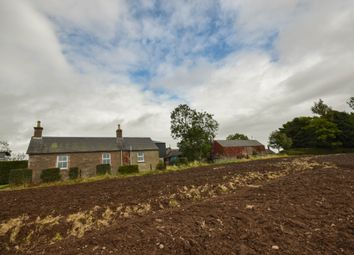 Thumbnail 1 bed flat to rent in Over Bow Farm, Forfar, Angus