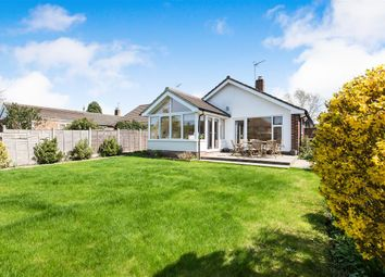 Thumbnail 4 bed detached bungalow for sale in Irving Road, Norwich