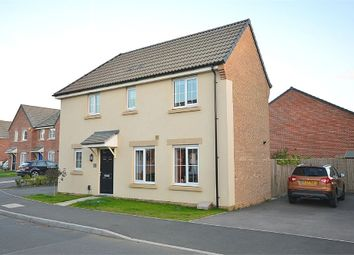 Thumbnail 3 bed detached house for sale in Damselfly Road, Dragonfly Meadows, Northampton