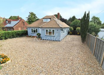 Thumbnail 4 bed detached bungalow for sale in Straight Road, Bradfield, Manningtree, Essex