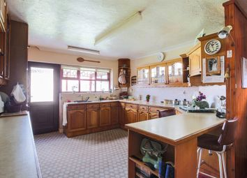 Thumbnail 4 bedroom detached bungalow for sale in Park Road, Spixworth, Norwich