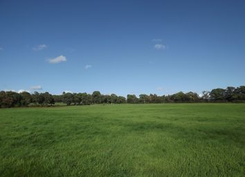 Thumbnail Land for sale in Little London Road, Heathfield