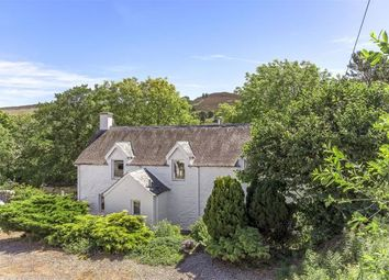 Thumbnail 4 bed detached house for sale in Dalrulzion Coach House, And Holiday Cottage Let, Bridge Of Cally, Blairgowrie