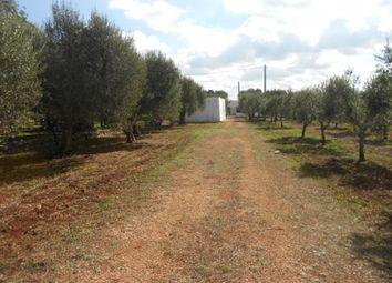 Thumbnail 4 bed farmhouse for sale in Lamia Stefania, Ostuni, Puglia, Italy