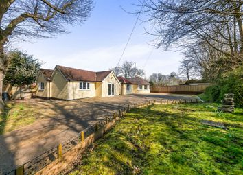 Thumbnail 5 bedroom detached bungalow for sale in Beacon Road, Ditchling, Hassocks