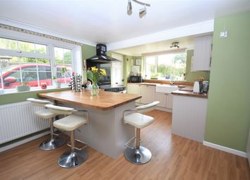 Thumbnail 4 bed detached house to rent in Little Salisbury, Pewsey