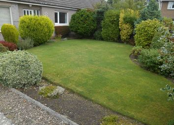 Thumbnail 2 bed semi-detached house to rent in Clatto Place, St Andrews, Fife