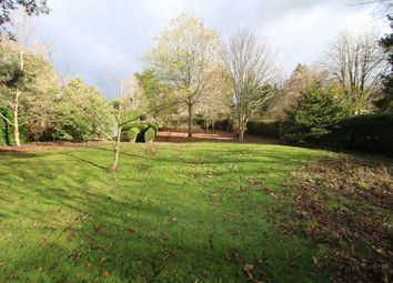 Thumbnail Land for sale in Land Adjoining Elmside, Main Street, Northiam, East Sussex