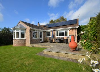 Thumbnail 3 bed detached bungalow for sale in Millbrook Close, Child Okeford, Blandford Forum
