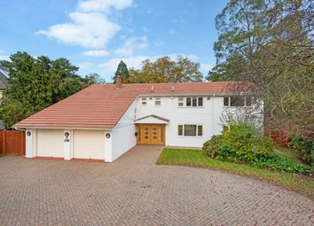 Thumbnail 5 bed detached house to rent in The Paddocks, Weybridge