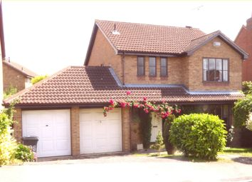 Thumbnail 4 bed detached house for sale in Silverburn Drive, Derby