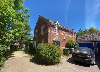 Thumbnail 4 bed detached house to rent in Newcastle Close, Thorpe St. Andrew, Norwich