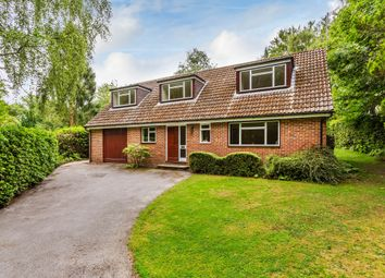 Thumbnail 4 bed detached bungalow to rent in Blackberry Road, Felcourt, East Grinstead