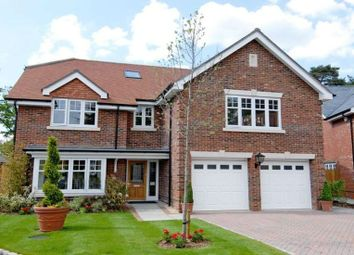 Thumbnail 5 bedroom detached house to rent in Chapel Pines, Camberley