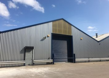 Thumbnail Industrial to let in Unit 13, Freemans Parc, Penarth Road, Cardiff