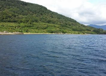 Thumbnail Land for sale in Carrick Castle, Lochgoilhead, Cairndow