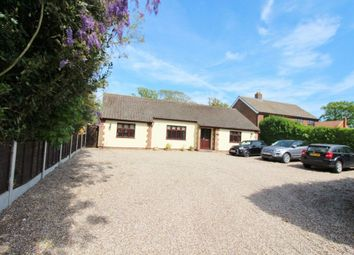 Thumbnail 3 bed detached bungalow for sale in Main Road, Rollesby