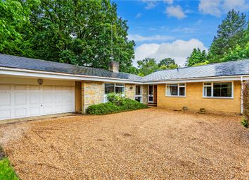 Thumbnail 4 bed bungalow for sale in Hook Heath, Woking, Surrey