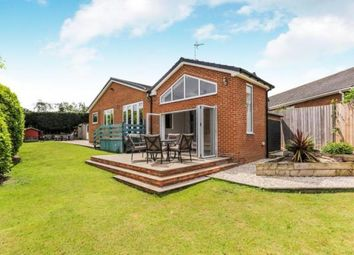 Thumbnail 5 bedroom bungalow for sale in Aintree Close, Doncaster