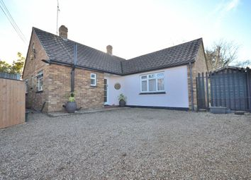 Thumbnail 2 bed detached house to rent in St Johns Green, Writtle, Writtle