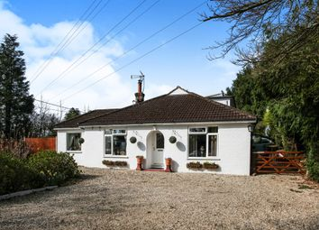 Thumbnail 3 bed detached bungalow for sale in Crook Hill, Braishfield, Romsey