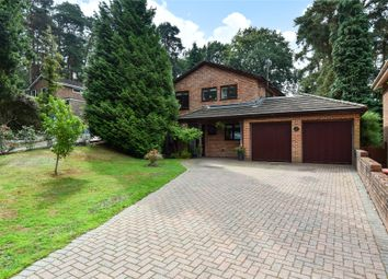 Thumbnail 4 bed detached house for sale in Cairn Close, Camberley, Surrey