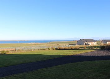 Thumbnail 4 bed detached bungalow for sale in Tankerness, Orkney