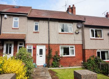 Thumbnail 3 bedroom terraced house for sale in Williams Terrace, Ryhope