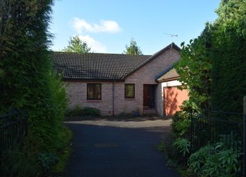 Thumbnail 3 bed detached bungalow for sale in St Cuthbert's Avenue, Dumfries