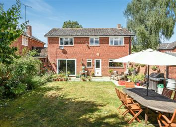 Thumbnail 5 bed detached house for sale in Romsey Road, Kings Somborne, Stockbridge, Hampshire