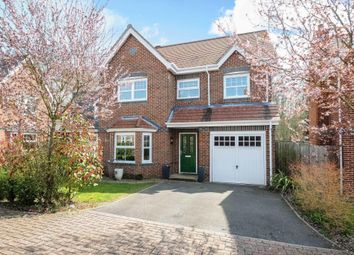 Thumbnail 4 bed detached house to rent in Hermitage, Berkshire