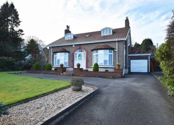 Thumbnail 4 bed bungalow for sale in Saddle Road, Douglas